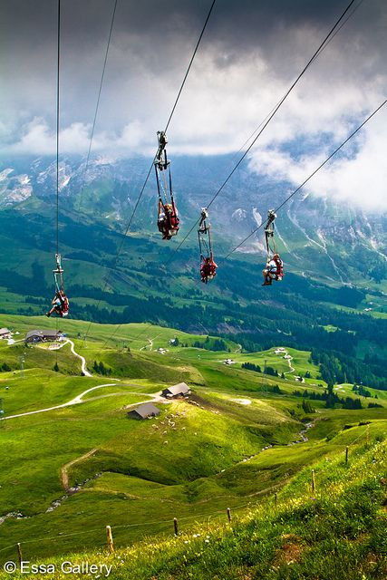 The First Flyer Grindelwald, Switzerland. 40mph zip line ride down a Swiss mountain. Definitely doing this.