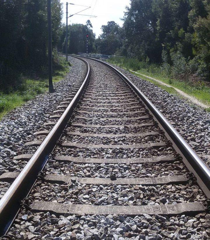 #araújo #train