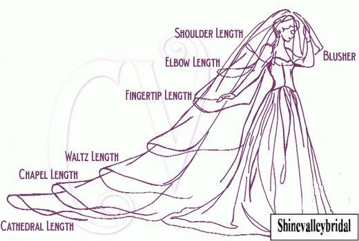 I want cathedral length...it's amazing on dresses...