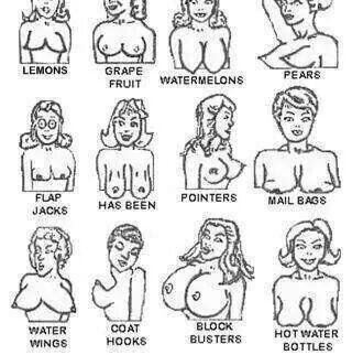 Different Boob Types 109