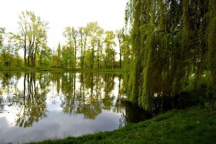 The Vistula in Wilanów Gardens .