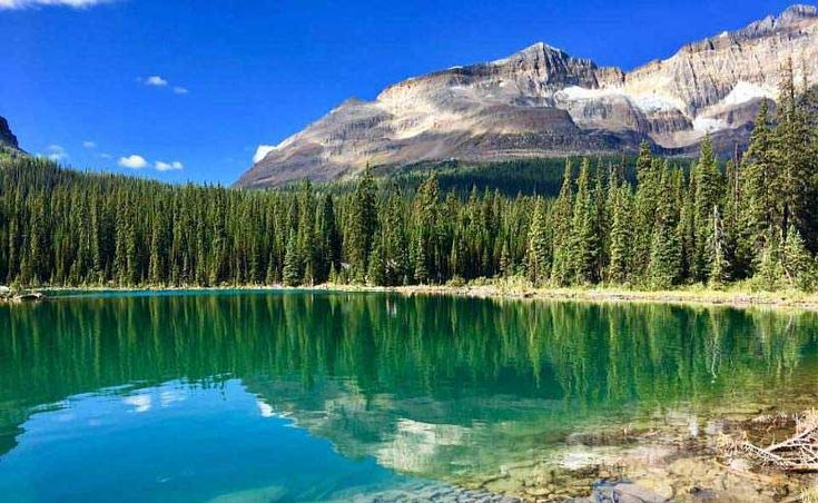 Lake O'Hara, Odaray Mountain, Yoho National Park, Canada
