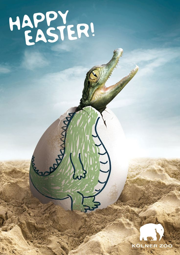 """""""Happy Easter from Cologne Zoo -- Cologne Zoo is running a print advertising campaign wishing visitors a Happy Easter. The three print ads show plain white eggs decorated as a penguin, pink flamingo and a crocodile. 'Happy Easter. Kölner Zoo'"""""""