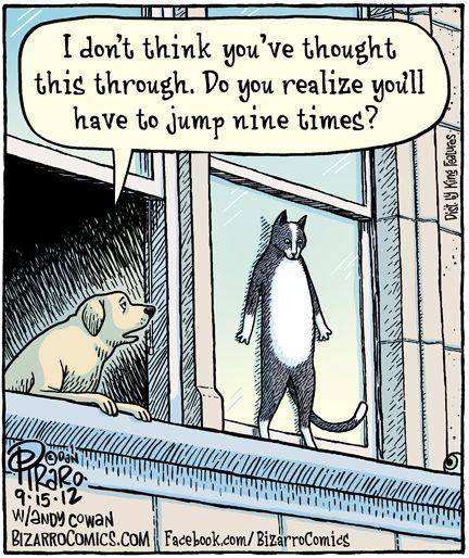 : Funny Cartoon, Funny Cat, Animal Humor, Funny Commercial, Funny Stuff, Funny Photos, Funny Animal, Funny Baby, Baby Cat