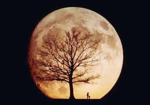 amazing moon pic