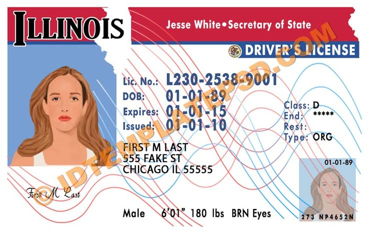 this is illinois usa state drivers license psd. Black Bedroom Furniture Sets. Home Design Ideas
