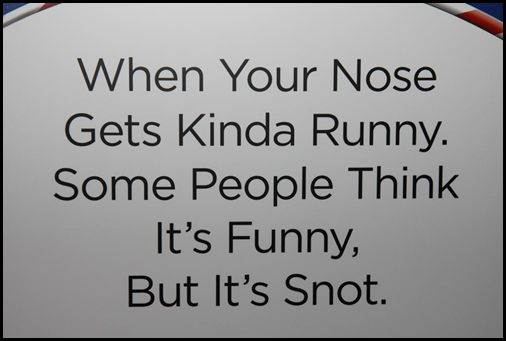 Funny Quotes About Allergies: 44 Best Images About My Health Hay Fever On Pinterest