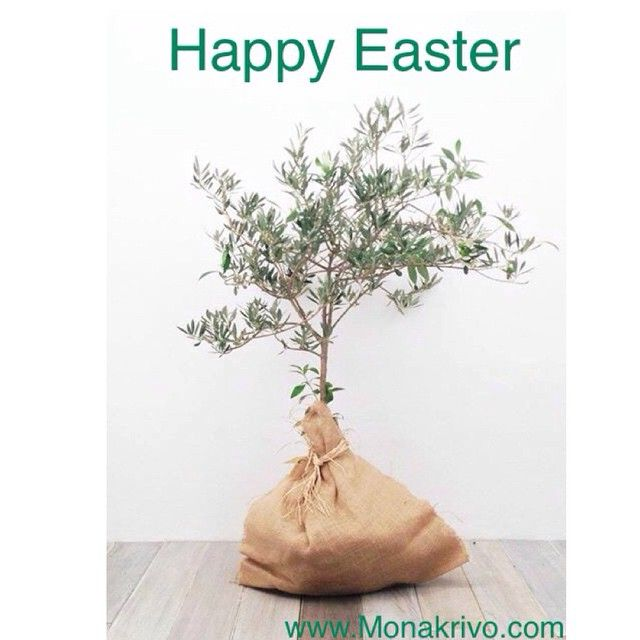 Happy Easter#Monakrivo#greek#extra# Virgin#olive#oil by @monakrivo - Square Pics