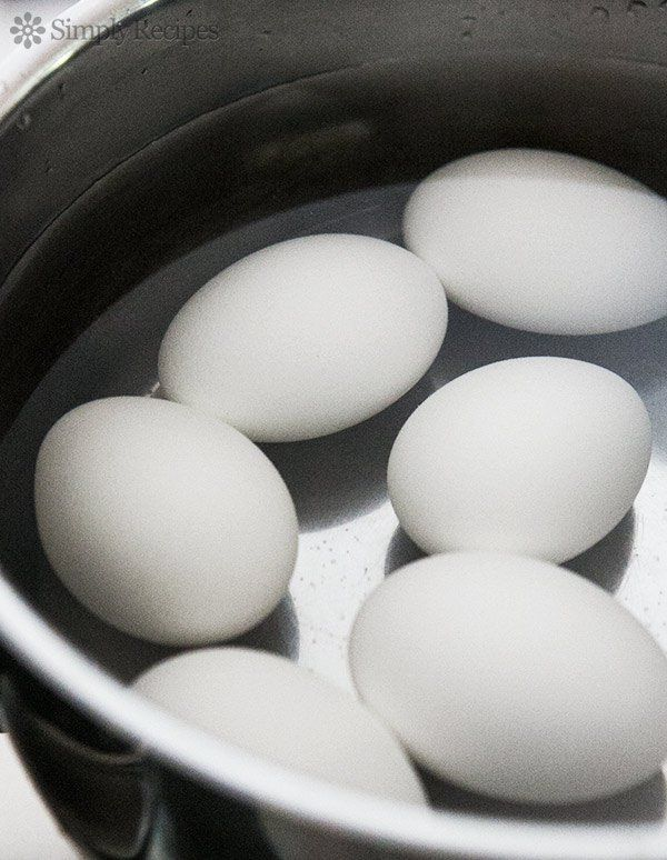 Best 25 how to boil eggs ideas on pinterest perfect hard boiled how to make perfect hard boiled eggs tips for how to boil eggs so they ccuart Images