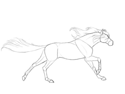 Horse Running Gif
