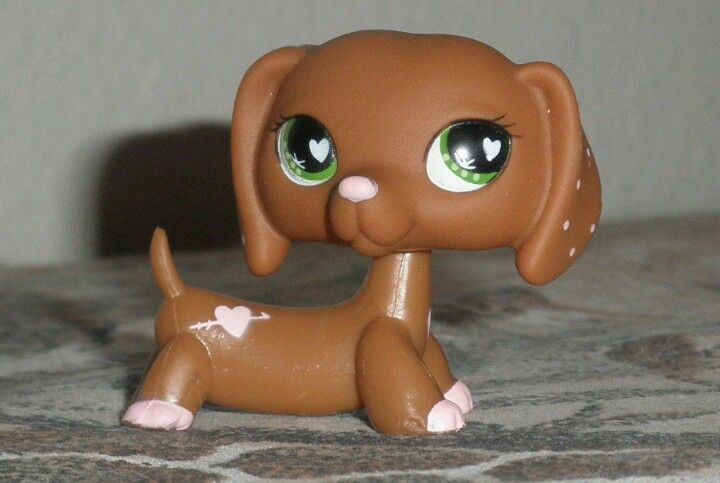 Lps dachshund this is the cutest dachshund ever and also on ebay and probably at amazon too but i get lps from lps.com :)