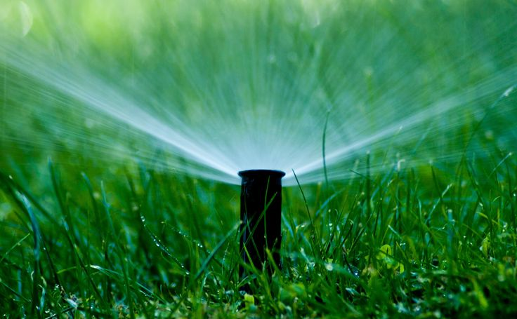Should All Automatic Irrigation Systems Have Rain Sensors?