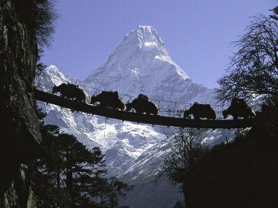 Bridge on Ama Dablam, Nepal Premium Poster