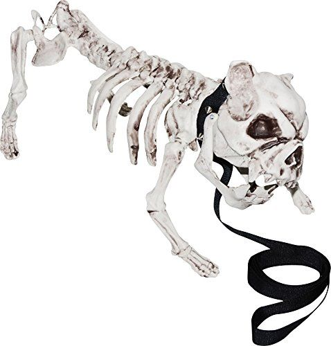 Skeleton Dog Halloween Prop Skull Bones Pet Bulldog Haunted House Decoration ** For more information, visit image link.Note:It is affiliate link to Amazon.