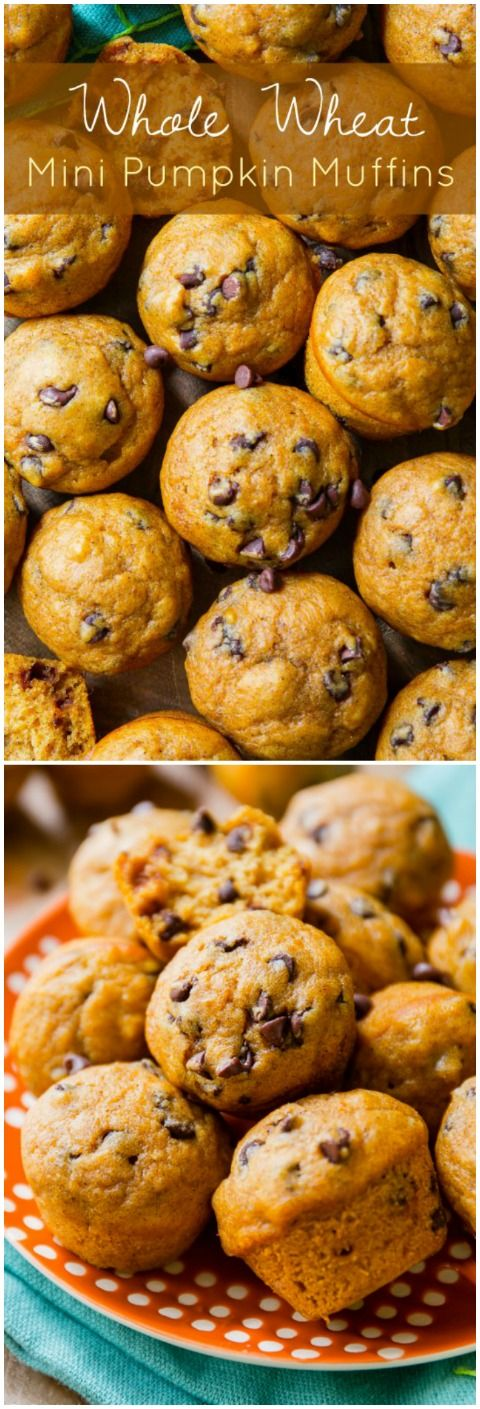 Pumpkin chocolate chip muffins made with whole wheat flour and only 60 calories each!