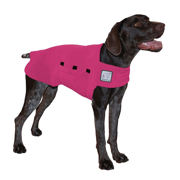 Magenta Pink German Shorthaired Pointer GSP Dog Tummy Warmer, great for warmth, anxiety and laying with our dog rain coat. High performance material. Made in the USA.