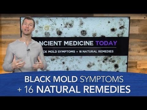 Black Mold Symptoms + 12 Natural Remedies - Dr. Axe