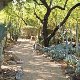 135 best Phoenix Home Garden images on Pinterest Phoenix homes