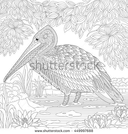 Stylized pelican standing among water lilies (lotus flowers) and pond algae.  Freehand sketch for adult anti stress coloring book page with doodle and zentangle elements.