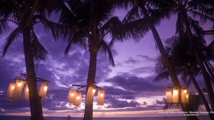 beach lights under the palms, purple sunset