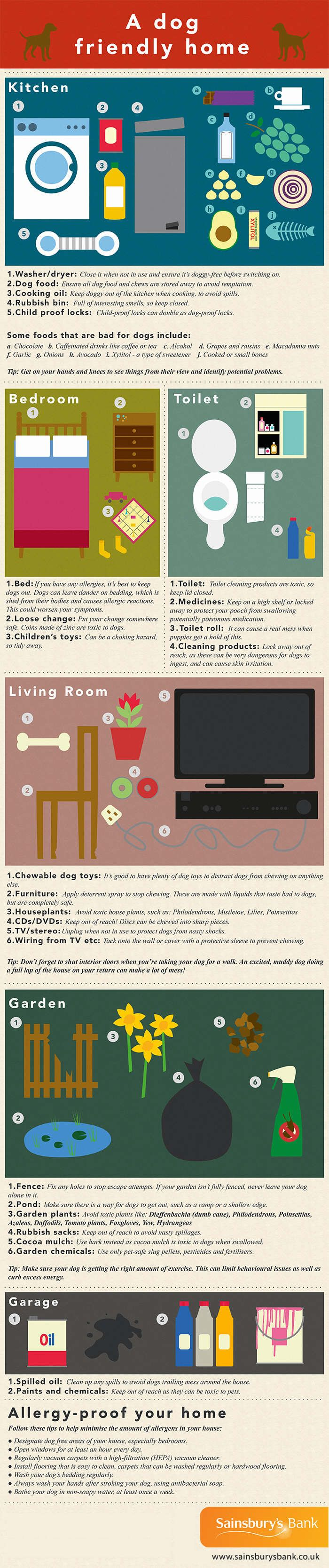 A dog friendly home infographic i find it a good idea to put yourself at dog eye level in each room and crawl around a bit