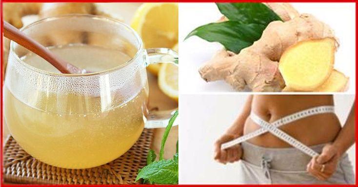 Ghimbirul este foarte des folosit datorită proprietăților sale terapeutice și de vindecare. Acesta poate fi consumat atât crud, cât și uscat. La fel, este pe larg folosit la pregătirea ceaiului, infuziilor sau pentru decocturi. Acestea sunt utilizate atât pentru vindecarea bolilor, cât și pentru prevenirea cestora. Ghimbirul are un miros și gust specific, datorită conținutului de zingeronă,sogaol și gingerol (o substanță ce tratează și previne cancerul de colon). În compoziția nutritivă a…