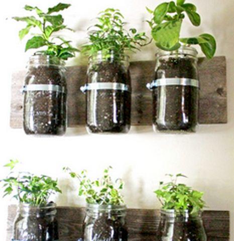 Como hacer macetas caseras con frascos de vidrio for Ideas con frascos de vidrio