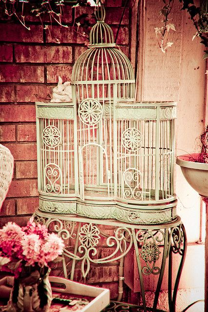 Birdcage by Stevie Benintende, via Flickr Shabby chic