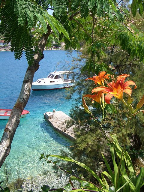 Korcula island, Dalmatia, Croatia