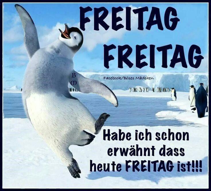 Freitag Freitag Freitaaaag D Freitag Lustig Freitag Zitate Freitag Meme