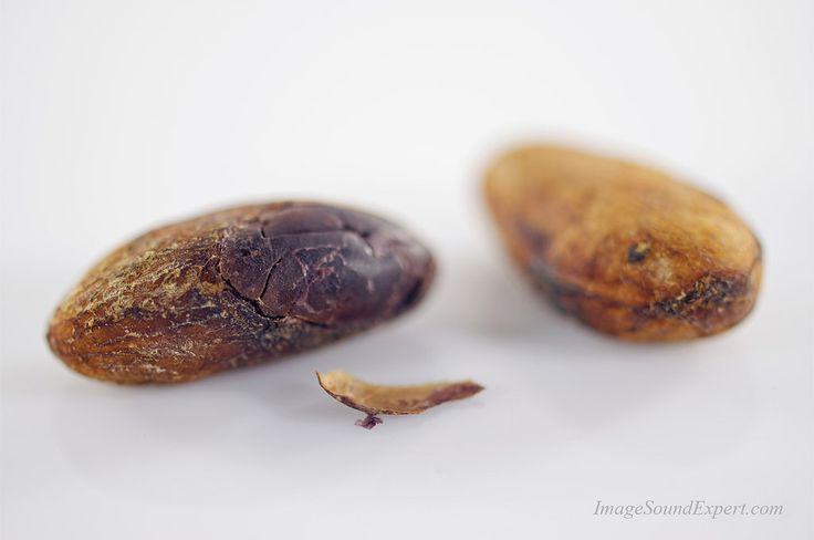 https://flic.kr/p/FuxjrE   organic cocoa beans8   organic cocoa beans