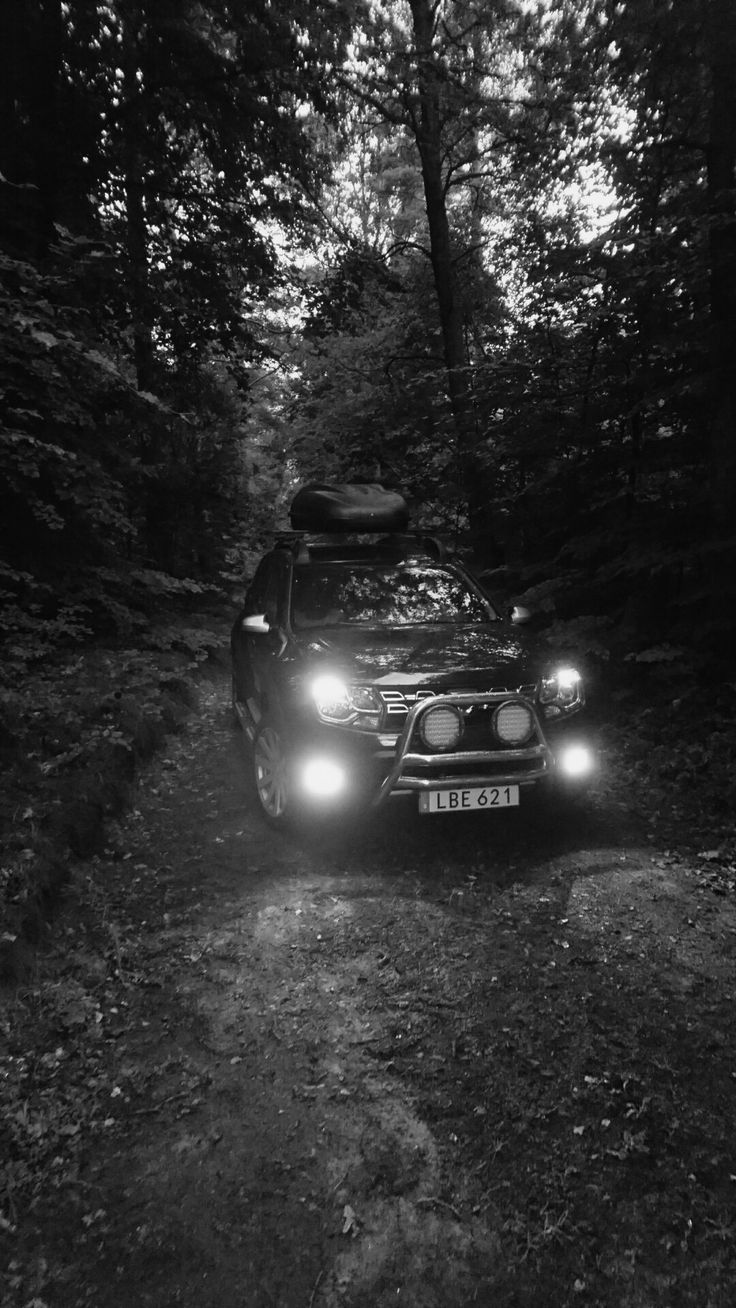 Dacia Duster With my new Roofbox from Dacia. 2016. 4x4 Adventure Edition. Out in The Woods
