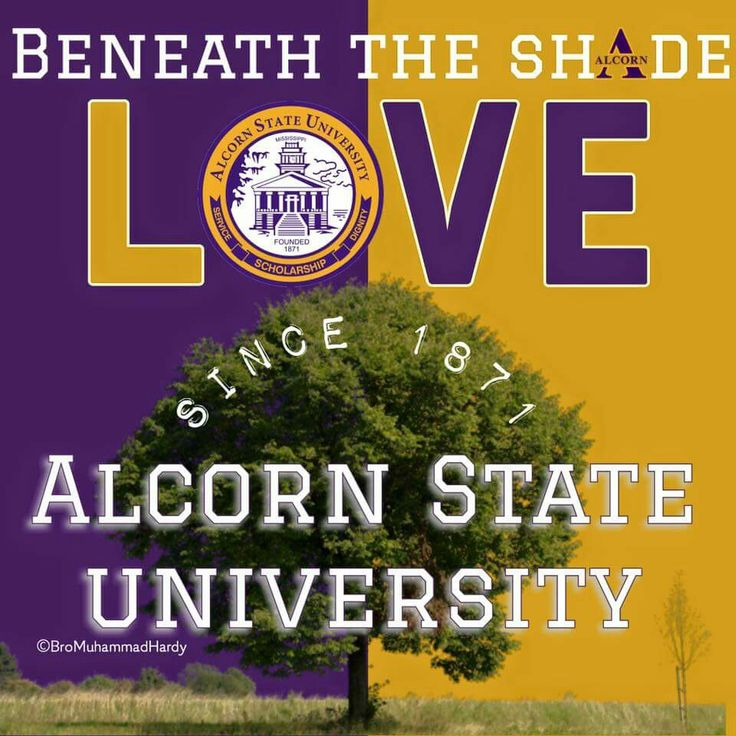 Pin by Stacey Bonds on Alcorn Love Historically black