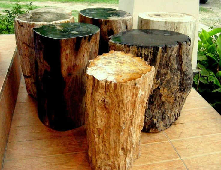 PETRIFIED WOOD STUMPS MADE FROM GENUINE FOSSIL WOOD.