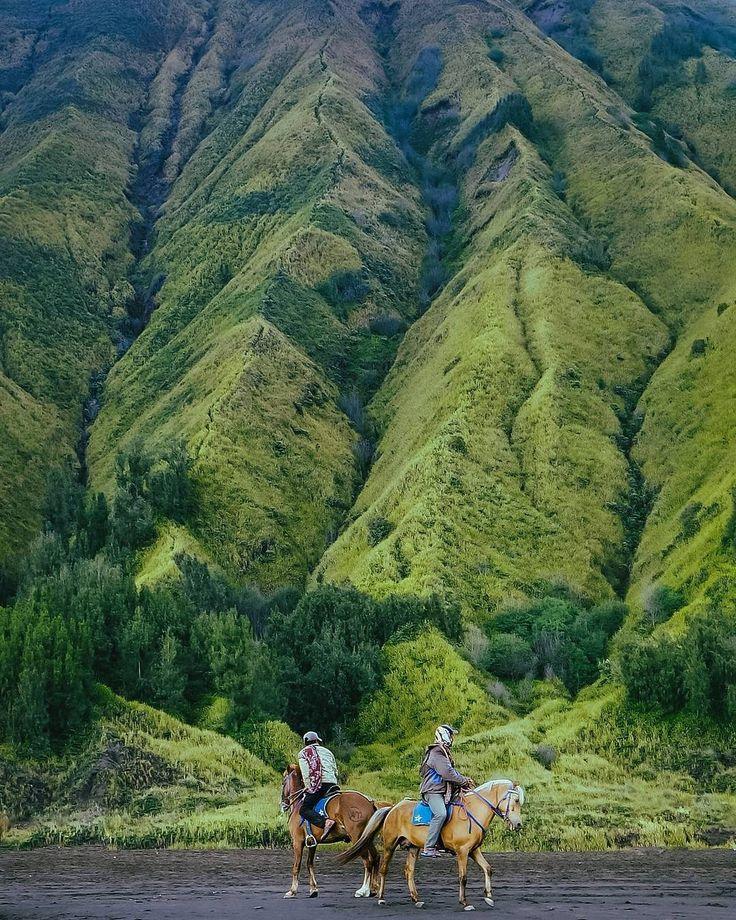 Start each day with a grateful heart. Good Morning Universe! . . Location : Gunung Bromo  by : @leorimba . . #exploremalang #gunungbromo #pesonaindonesia #wonderfulindonesia #tamannasionaltenggersemeru #explorebromo #tukangjalan #tukang_jalan #traveling #indonesia #morningmotivations #jalanjalan #jelajahindonesia #mountains #travelphotography #tourandtravel #wisataalam #bromo