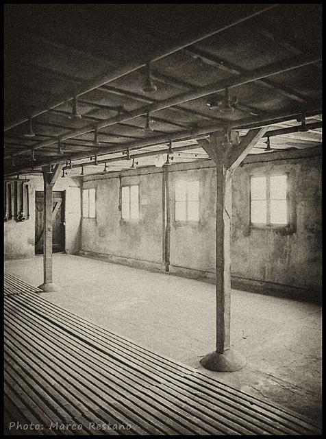 Shower Room - KL Majdanek, May 2012