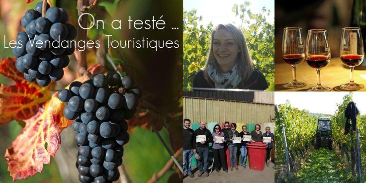Le Synvira et ses Vignerons adhérents en partenariat avec les offices de tourisme de la Route des Vins proposent de vivre l'expérience unique des vendanges au cœur du vignoble alsacien le temps de quelques heures.   « Vendangeur d'un jour » est une réponse à l'envie d'authenticité.   Office de Tourisme d'Obernai Tél. : 03 88 95 64 13 e-mail : info@tourisme-obernai.fr www.tourisme-obernai.fr