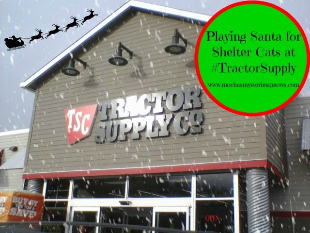 Tractor Supply Garage Tent : Best images about kitty s korner on pinterest dog