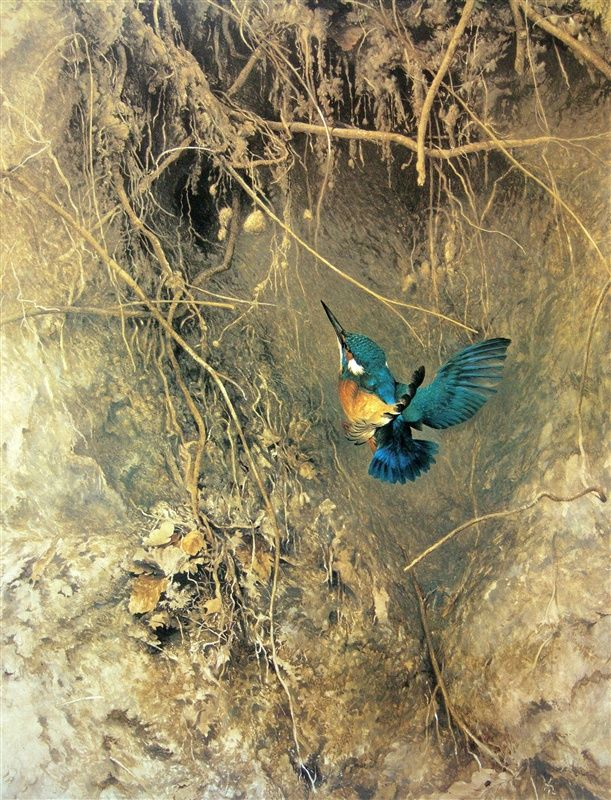 Raymond Ching bird paintings are amazing!