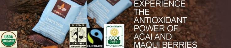 CRP, CRP levels, Migraine, Migraines and tagged cacao-plant, chocola, choconat, choconat groesbeek, CRP, drastisch, migraine, migraine verlichting, Migraines, onderdrukken, ontstekingsreacties, peter langelaar, peter langelaar groesbeek, Reduce Migraines, Theobroma, Theobroma cacao, theobromide, verminderen, voedingssupplement.
