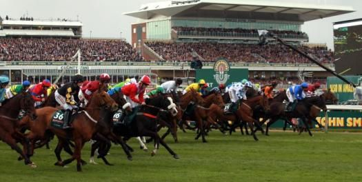 Tips for Grand National Runners 2015	IT'S assessed that a quarter of the UK grown-up populace will wager on the Grand National on Saturday. A great many people will have a little every route wager on a steed they favor for no other explanation then they like the name. : ~ http://www.managementparadise.com/forums/trending/282206-tips-grand-national-runners-2015-a.html