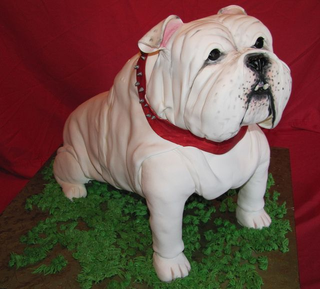 Excellent 22 best Bulldog Cakes images on Pinterest | Bulldog cake, Cake  EM02