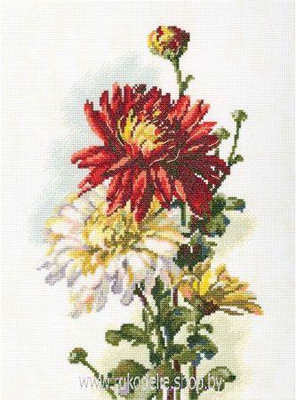 Рто цветы в горшочках купить подарок в вк на 14 февраля