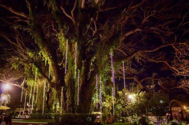 Jardin hacienda casasano cuautla morelos mexico for Jardin xochicalli cuautla