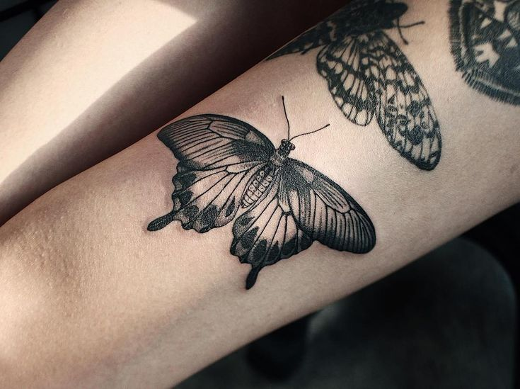 """608 Likes, 7 Comments - Yeji Im (@yejitattoo) on Instagram: """"Thank you for letting me tattoo you butterfly on lovely @kaiju_rapture """""""