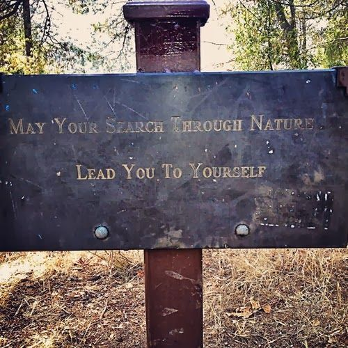 May your search through nature lead you to yourself. – Nice words! – cool things