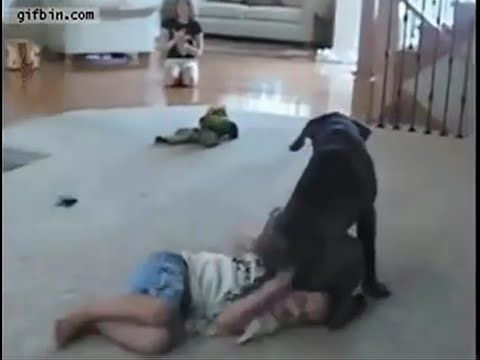 Top 50+ Funny cute compilation cute Kids Fails Ever  funny cute compilat...
