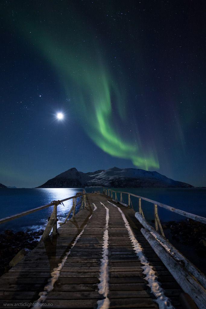 Northern light in Northern Norway. Aurora Borealis