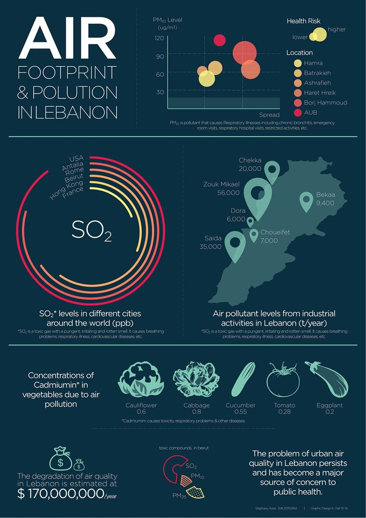 Air pollution in Lebanon infographic poster Air