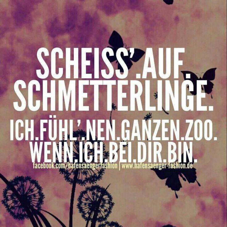 """""""Scheiss auf Schmetterlinge. Ich fühl nen ganzen Zoo wenn ich bei dir bin."""" #Spruch #Schmetterlinge"""